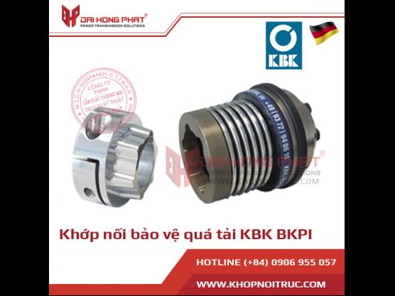 Khớp nối bảo vệ quá tải KBK BKPI